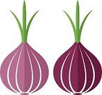 Isolated,Red,Green Color,Ilustration,Abstract,Sign,Vector,Vegetable,Blue,Onion