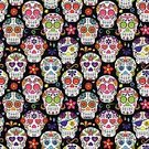 Day Of The Dead,Cinco De Mayo,Vector,Mask,Mexico,Traditional Clothing,Ornate,Pattern,Seamless,Human Bone,Pirate,Heart Shape,Human Skull,Backgrounds,The Human Body,Traditional Ceremony,Death,Cemetery,Spirituality,Tattoo,Dead Person,Spooky,Ceremony,Traditional Festival,Dia De Muertos,Halloween,All Souls Day,Flower,Period Costume,Horror,Costume,Religious Offering,Dead,Party - Social Event,Mexican Culture,Skull and Crossbones,Human Heart,Catholicism,Shrine,November,Human Skeleton,Holiday,Single Flower,Grave,Celebration,Cultures,Sugar Skull,Zombie,all saints day,Mexican Ethnicity