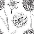 Springtime,Flower,Ornate,Single Flower,Flourish,Nature,Petal,Design Element,Bush,Floral Pattern,Single Line,Daffodil,Hand-drawn,Style,Formal Garden,Monochrome,Swirl,Art,Wallpaper Pattern,Backgrounds,Black Color,Flower Head,Painted Image,Retro Revival,Dahlia,Ilustration,Textured Effect,Abstract,Drawing - Activity,Decoration,Narcissus,Computer Graphic,foliagé,Outline,Seamless,Black And White,Ink,Blossom,Botany,Chrysanthemum,Leaf,Fashion,Engraving,Old-fashioned,Pattern,Wallpaper,Decor,Design,Vector,Summer,Elegance,template,Drawing - Art Product,Deco