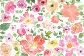 Green Color,Wallpaper Pattern,Drawing - Art Product,Wallpaper,Flower Head,Flower,Floral Pattern,Watercolor Paints,Watercolor Painting,Design Element,Abstract,Backgrounds,Nature,Petal,Ilustration,Springtime,Drawing - Activity,Cranesbill,Tracery,Pattern,Stem,Wrapping Paper,Fashion,Season,Painted Image,Paint,Computer Graphic,Paintings,Pink Color,Repetition,Small,Spring - Flowing Water,Shape,Romance,Pencil Drawing,Art,Vector,Textile,Design