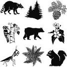 Forest,Insect,Mammal,Plant,Bird,North America,Black And White,vector illustration,American Black Bear,Icon Set,North American Mammal,Pine Tree,Pine Cone,Animal,Set,Black Color,Vector,Wildlife,Bear,Woodpecker,Squirrel,Praying Mantis,Raccoon,Fern