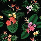 Tropical Flower,Tropical Rainforest,Palm Tree,Pattern,Seamless,Bird of Paradise,Design,Flower Head,Ilustration,Fashion,Multi Colored,Uncultivated,Summer,Formal Garden,Nature,Black Color,Hawaii Islands,Hibiscus,Flower,Wallpaper Pattern,Springtime,Leaf,Sub-tropical Climate,Aloha,Idyllic,Black Base,Textile,Digitally Generated Image,Blossom,Plant,Front or Back Yard,Repetition,Jungle Leaf,Safari,Design Element,Exoticism,Vector,Jungle Floral,Tropical Climate,Floral Pattern,Orchid,Organic,Green Color,South Africa