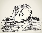 Swan,Lake,White,Bird,Ink,Backgrounds,Animal Neck,Floating On Water,River,Vector,Water,Grace,Cute,Nature,Drawing - Art Product,Feather,Poultry,Pond,Sketch,Animals In The Wild,Tranquil Scene,Elegance,Wildlife,Swimming Animal,Beak,Water Bird,Wave Pattern,Wave,Pencil Drawing,Paintings,Animal,Ilustration,Silhouette,Contour Drawing,Outline,Wing