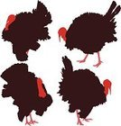 Turkey - Bird,Silhouette,Back Lit,Animal,Dinner,Vector,Farm,Bird,Symbol,Pecking,Poultry,Outline,Livestock,Celebration,Cartoon,Domestic Animals,Clip Art,Cut Out,Shape,Ilustration,November,Isolated,Illustrations And Vector Art,gobble,Isolated On White,Animals And Pets,Birds,Brown,Farm Animals,Red,Standing,Vector Icons,Candid,Holiday