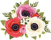 Wedding,Design Element,Ilustration,Anemone Flower,Leaf,Poppy,Red,Beautiful,Petal,Flower Head,Multi Colored,Composition,Bud,Bouquet,Blossom,Botany,Style,Vector,Design,Plant,Ornate,Decoration,Vignette,White,Flower,Gift,Purple,Rose - Flower,Pink Color,Nature,Green Color,Isolated,White Background