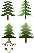 Fir Tree,Tree,Symbol,Forest,Root,Growth,Woodland,Green Color,Gardening,Environment,Leaf,Front or Back Yard,Formal Garden,Christmas,Nature,Lumber Industry,Environmental Conservation,Orchard