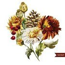 Bouquet,Chrysanthemum,Multi Colored,Boho,Flower Head,Romance,Abstract,Backgrounds,Decoration,Ornate,Adulation,Chance,Red,Nature,Leaf,Elegance,Fashion,Ilustration,Summer