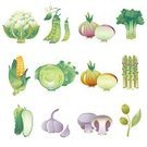Vegetable Garden,Vegetable,Bean,Cucumber,Onion,Garlic,Broccoli,Asparagus,Olive,Vector,Ilustration,Cabbage,Plant Pod,Cooking,Food,Agriculture,Cereal Plant,Groceries,Purple,Crop,Edible Mushroom,Plant,Vegetarian Food,Season,Healthy Eating,Seed,Leaf,Small,Freshness,Juicy,Green Color,Gourmet,Healthy Lifestyle,Summer,Porcelain Agaric,Yield Sign,Refreshment,Ripe,Corn - Crop,Nature,Desire,Fruits And Vegetables,Field Mushroom,Health Symbols/Metaphors,Food And Drink,Beauty And Health,Illustrations And Vector Art,Vector Cartoons