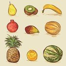Vegetable,Fruit,Pomegranate,Fig,Sketch,Pineapple,Drawing - Art Product,Vector,Food,Banana,Watermelon,Ilustration,Melon,Pear,Kiwi - Fruit,Orange - Fruit,Collection,Outline,Freshness,Paintings,Set,Nature,Vector Cartoons,Illustrations And Vector Art,Vector Icons