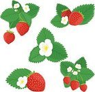 Food,Berry,Leaf,Fruit,Strawberry,Set,Vector,Flower,Single Flower,Nature,Isolated On White,Flower Head,Design Element,Red,Bud,Green Color,Collection