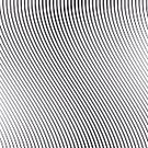 Computer Graphic,Black Color,White,Seamless,Backgrounds,Wave Pattern,Abstract,Decoration,Conflict,Relaxation,Geometric Shape,Contrasts,Futuristic,Black And White,Photographic Effects,Sound,Eyesight,Design,Hypnotist,Motion,Illusion,Psychedelic,Curve,Effortless,Trance,Moire,Pattern,Backdrop,Rough,Grainy,Grid,Striped,Chaos