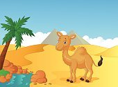 Mammal,Nature,Landscaped,Symbol,Cheerful,Heat - Temperature,Desert,Egypt,Smiling,Water,Rock - Object,Palm Tree,Land,Mascot,Happiness,Fun,Ilustration,Exoticism,Desert Oasis,Pyramid,Tree,Sand,Animal,Brown,Humor,Cute,Characters,Cartoon,Camel,Animals In The Wild