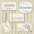 Lavender Coloured,Invitation,Lavender,Greeting Card,Spa Treatment,Purple,Herb,Nature,Oil,Card Design,Label,herbarium,Presentation,Internet,Packing,Aromatherapy,Botany,Relaxation,Wood - Material,Packaging,Flyer,Health Spa,Romance,Placard,Flower,Herbal Medicine,Merchandise,Business,Single Flower,Design,advertise,Collection,Pattern,Banner,Old-fashioned,Spa,Plank,Retro Revival,1940-1980 Retro-Styled Imagery,Wedding,Bouquet,Vector,Backgrounds,Plant