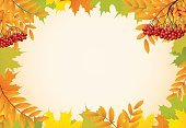 Decoration,Multi Colored,Colors,November,Ornate,Plan,Nature,Design Element,Design,Pattern,Plant,Illustration,Yellow,Floral Pattern,Rowanberry,Environment,Leaf,Tree,Season,Gold Colored,Textured,Picture Frame,Falling,Rowan Tree,Bright,Brown,Color Image,Orange Color,Vibrant Color,Backgrounds,Abstract,Painted Image,Art,Autumn,October,Red,Vector,Forest,Ash Tree,Flower,Frame,Textured Effect,Maple Tree,September,Green Color,Part Of