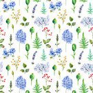 Tranquil Scene,Decor,Bouquet,Square,Paint,Design,Plant,Drawing - Activity,Blue,Green Color,Multi Colored,Pattern,Flower,Leaf,Flower Head,Petal,Bud,Springtime,Summer,Greeting,Decoration,Backgrounds,Hydrangea,Art And Craft,Art,Craft,Cute,Currant,Ornate,Abstract,Watercolor Painting,Blossom,Illustration,Celebration,Template,Floral Pattern,Lavender Colored,2015,Seamless Pattern