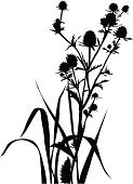 Plant,Silhouette,Natural Pattern,Herb,Botany,Foliate Pattern,Corner,Ornamental Garden,Blossom,Flower Bed,Growth,Floral Pattern,Grass,Nature,Landscape,Computer Graphic,Bush,Leaf,Meadow,Springtime,Field,page decoration,Stem,Summer,New Life,Beauty In Nature,Rural Scene,Angle,Clip Art