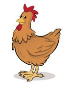 Farm,Animal,Cartoon,Poultry,Poultry,Illustration,Chicken Meat,House,2015,Chicken - Bird,Farmhouse,Rooster,Standing,Vector,Brown