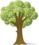 Tree,Human Hand,Care,Green Color,Blossom,Nature,Environmental Conservation,Human Arm,Environment,Concepts