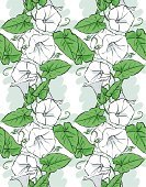Floral,Nature,Drawing - Art Product,Plant,White Color,Pattern,Striped,Flower,Vine,Uncultivated,Leaf,Curve,Backgrounds,Beauty,Morning Glory,Illustration,Convolvulus,Cartoon,Beauty In Nature,Sketch,No People,Vector,Wildflower,White Background,Perennial,Bindweed,seamless tile,Seamless Pattern,Illustrations And Vector Art