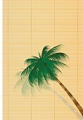 Material,Tree,Summer,Palm Tree,Illustration,No People,Vector,2015,Early summer