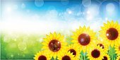 Blue,Material,Sky,Summer,Sunflower,Illustration,No People,Vector,2015,Early summer