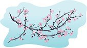 Cherry Blossom,Cherry Tree,Blossom,Flower,Branch,Japanese Culture,Vector,Art,Backgrounds,Design,Bud,Plant,Scented,Growth,Stem,Day,Ilustration,Decoration,Design Element,No People,Sky,Horizontal,Petal,Nature,Beautiful,Spring,Vector Florals,Clear Sky,Flowers,Nature,Leaf,Illustrations And Vector Art,Blue,Pink Color,Color Image,Beauty In Nature