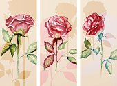 Computer Graphics,Nature,Human Body Part,Affectionate,Human Hand,Shape,Summer,Rose - Flower,Decoration,Backgrounds,Computer Graphic,Ornate,Watercolor Painting,Blossom,Illustration,Template,Painted Image,Vector,Single Flower,Collection,Banner - Sign,2015,Banner