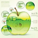 Cut,Fat,Food and Drink,Food,Symbol,Freshness,Advice,Data,Education,Nature,Healthcare And Medicine,Botany,Composition,Chart,Design,Plant,Green Color,Circle,Part Of,Slice,Fruit,Water,Mineral,Ripe,Apple - Fruit,Plan,Backgrounds,Cutting,Sugar,Gardening,Chemical,Diagram,Cross Section,Illustration,Biochemistry,Organic,Template,Dieting,No People,Healthy Eating,Vector,Protein,Vitamin,Carbohydrate - Biological Molecule,Fat,Ideas,2015,Infographic,Horticulture,Carbohydrate - Food Type,Plan,78719,Juicy,60527,60500