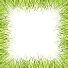 Freshness,Environment,Nature,Plant,Front or Back Yard,Green Color,White Color,Empty,Springtime,Summer,Landscape,Lawn,Field,Backgrounds,Frame,Grass,Illustration,Template,Copy Space,Floral Pattern,No People,Vector,Landscaped,2015,Isolated,Empty