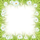 Freshness,Environment,Nature,Plant,Front or Back Yard,Green Color,White Color,Empty,Flower,Springtime,Summer,Landscape,Lawn,Field,Backgrounds,Frame,Grass,Chamomile,Illustration,Template,Copy Space,Floral Pattern,No People,Vector,Single Flower,Landscaped,2015,Chamomile,Isolated,Empty