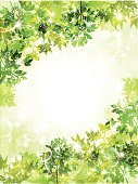 Nature,Green Color,Material,Illustration,No People,Vector,2015,Background Illustration