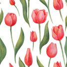 Flower,Art And Craft,Tulip,Plant,Art,Painted Image,Wedding,Beauty,Old-fashioned,Wallpaper,Ornate,111645,Multi Colored,Beautiful People,Repetition,Illustration,Nature,Leaf,Christmas Decoration,Flower Head,2015,Single Flower,Red,Pattern,Seamless Pattern,Floral Pattern,White Color,Watercolor Painting,Decoration,Watercolor Paints,Backgrounds,Retro Styled,Paintings,Blossom,Floral,Beauty In Nature,Textile,Print,Vector,Springtime
