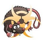 Character,Danger,Humor,Sign,Animal,Dirty,Rodent,Rat,Gray Hair,Cut Out,Biohazard Symbol,Illustration,Evil,Spooky,Cartoon,Pest,Vector,Unhygienic,Characters,Poisonous,78013,2015,Gnawer