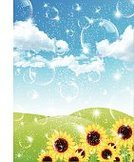 Material,Summer,Sunflower,Illustration,No People,Vector,2015,Background Illustration