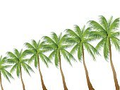 Material,Tree,Leaf,Summer,Palm Tree,Cut Out,Illustration,No People,Vector,2015