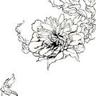 Peony,Flower,Black Color,White,Drawing - Art Product,Art,Vector,Pattern,Floral Pattern,Outline,Ilustration,Modern,Single Object,Pencil Drawing,Nature,Computer Graphic,foliagé,Fine Art Painting,Decoration,Paintings,Leaf,Growth,Plant,Tracery,Design Element,Clip Art,Elegance,Line Art,Ornate,Close-up,Painted Image,Macro,Bush,Cultures,Petal,Beautiful,Intertwined,White Background,Pen And Ink,Style,Beauty In Nature,Illustrations And Vector Art,Vector Florals,Creativity,Vector Ornaments,Inks On Paper,Curled Up