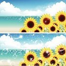 Nature,Blue,Material,Sky,Summer,Sunflower,Sea,Pacific Ocean,Pacific Islands,Soap Sud,Illustration,Sandy Beach Oahu,No People,Vector,2015,Background Illustration