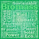 by product,Biogas,Recycling,Efficiency,Word Cloud,Wealth,Biofuel,Illustration,Climate,Nature,Planet - Space,2015,Satisfaction,Technology,Garbage,Environment,Biomass - Ecological Concept,Worth,Biomass - Renewable Energy Source,Carbon Footprint,Vector