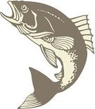 Fish,Fishing,Sea,Sport,Animal,Animal Themes,Relaxation,Nature,Recreational Pursuit,Leisure Activity,Illustrations And Vector Art