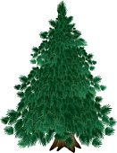 Tree,Christmas,Pine,Silhouette,Forest,Vector,Branch,Green Color,Backgrounds,Winter,Isolated,Large,Old,Fir Tree,Symbol,Drawing - Art Product,Cultivated,Abstract,Landscape,Ilustration,Woodland,Decoration,Paint,Tree Trunk,Holiday,Flower,Image,Autumn,Landscaped,Nature,Growth,Single Object,Computer Graphic,Creativity,Plant,Painted Image,Weather,Design,Season,Shape,Color Image,Nature,Plants,Vector Backgrounds,Nature Backgrounds,Beauty In Nature,Youth Culture,Illustrations And Vector Art