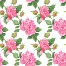 Elegance,Plant,Wedding,Scrapbook,Summer,Illustration,Leaf,Greeting,Shabby Chic,Flower Head,2015,Peony,Pattern,Seamless Pattern,Romance,Messy,Botany,Pink Color,Affectionate,Square,Backgrounds,Messy,Textile