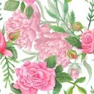 Plant,Petal,Multi Colored,Summer,No People,Illustration,Nature,Leaf,Shabby Chic,Flower Head,Fashion,2015,Peony,Red,Pattern,Seamless Pattern,Romance,Decoration,Botany,Pink Color,Square,Backgrounds,Rose - Flower,Bouquet