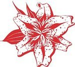 Stargazer Lily,Lily,Flower,Single Flower,Nature,Flowers,Weddings,Holidays And Celebrations,Vector Icons,Plant,Beauty In Nature,Illustrations And Vector Art,Nature