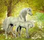 Flower,Horse,Livestock,Daisy,Plant,Outdoors,Animal,Bush,Forest Trees,Horizontal,Ornate,Lush Foliage,Petal,Horned,Unicorn,Scented,Ethereal,Mammal,Animals In The Wild,No People,Paranormal,Illustration,Fairy Tale,Nature,Leaf,Horsepower,Image,Mare,2015,Mythology,Cultures,Mountain,Fantasy,White Color,Decoration,Botany,New Life,Forest,Season,Filly,Foal,Blossom,Forest Animal,Floral,Uncultivated,Springtime,Green Color