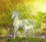Flower,Horse,Plant,Outdoors,Valley,Animal,Bush,Forest Trees,Horizontal,Lush Foliage,Horned,Unicorn,Ethereal,Mammal,Animals In The Wild,No People,Paranormal,Illustration,Fairy Tale,Nature,Growth,Leaf,Image,Temperate Rainforest,Mare,2015,Flower Pictures,Mythology,Cultures,Mushroom,Fantasy,White Color,Botany,New Life,Forest,Season,Foal,Blossom,Forest Animal,Floral,Uncultivated,Tree,Springtime,Green Color