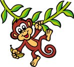 Monkey,Tropical Rainforest,Animal,Banana,Vector,Hanging,Swinging,Tree,Vine,Ilustration,Cheerful,Tail,Happiness,Smiling,Leaf,Vector Cartoons,Wild Animals,Actions,Illustrations And Vector Art,Animals And Pets