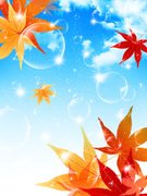 Blue,No People,Illustration,Leaf,Sky,2015,Autumn,autumn sky,Tree,Vector,Yellow,Material