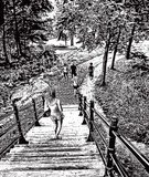 Casual Clothing,Young Men,Stipple Effect,Line Art,268399,,Recreational Pursuit,Obscured Face,Canada,Staircase,Outdoors,Mezzotint,Quebec,Enjoyment,Leisure Activity,Black And White,Young Women,Number of People,Men,Engraved Image,Summer,Hiking,Illustration,Relaxation,Nature,People,Garden Path,Textured,2015,Footpath,Woodland,Group Of People,Mountain,Aubusson,Unrecognizable Person,Incidental People,Vertical,Adult,Forest,60161,Young Adult,Public Park,Engraving,Metropark,Scenics,Textured Effect,Vector,Walking,Women,Steps,Design Element,Capital Cities,Montreal