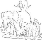 Large,Large,Africa,Animal,Mammal,Elephant,Small,Zoo,Outline,Coloring Book,Illustration,No People,Vector,Safari Animals,2015