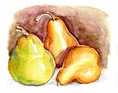 Watercolor Painting,Pear,Fruit,Ilustration,Painted Image,Food,Still Life,Nature,Food And Drink,Ingredient,Art Product,Food And Drink,Beige,Refreshment,Arts And Entertainment,Healthy Eating,Three Objects,Three Animals,Three People,Gold Colored
